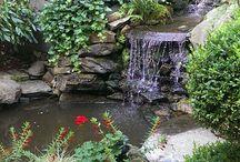 voda v zahrade