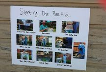 Sustainable Urban Living / This board is about what people do to have a sustainable urban lifestyle.