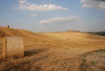 Siena e il suo territorio