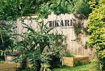 Archi karé  / Carré potager / Design