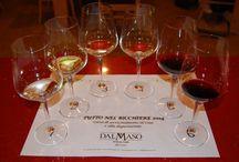 Tutto nel Bicchiere 2014 / Un corso di avvicinamento al vino e alla degustazione  A tasting course...