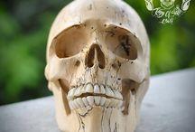 RARE Hand Carved Tamarind Wood Human Skull RealisticTHB2