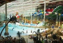 Aquatic Development Group / Aquatic Development Group, Inc. (ADG), is the world's biggest single provider of aquatic and waterpark equipment. ADG designs, constructs and builds innovative revenue-generating products. ADG alos creates Mountainside and recreational products for the leisure industry.