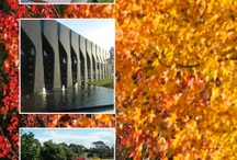 Melbourne Cemeteries