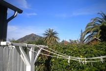 clothesline dreams