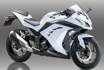 Motorcycle: Small 250cc Sport / 250 cc sport motorcycle from Honda, Suzuki, Kawasaki, etc.
