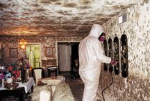 Mold Cleaning / Mold Cleaning