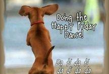 Friday humor