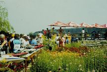World Championship of boat models in Nagykanizsa/Hungary in 1984.