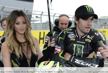 """Energy Drink Models / In particular the more popular energy drinks as Red Bull, Monster Energy and Rockstar Energy have usual their model-squad at event. This is not just limited to motorsport as """"just grid girls"""" are at races."""