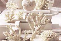 White * Cream * Ivory