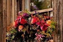 decoration - wreath,door decoration/vence,venčeky , dekorácie na dvere