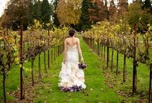 Wine & Words Wedding / Budget-friendly wedding with a theme around wine and words