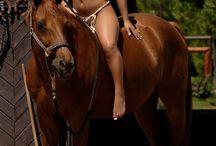 Nude Women & horse