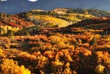 Mountain Scenics / http://www.visittelluride.com/plan-your-trip