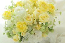Mazzi di fiori gialli