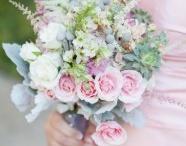 if i ever get married :) / by Elizabeth Hamilton