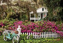 Outdoor Spaces / Outdoor Spaces & Garden / by Bewildered Mom .