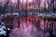 Landscapes & Scenery / by Kiss My Sass Cosmetics