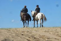 Riding in Uruguay / A collection of photographs taken whilst riding a horse through Uruguay