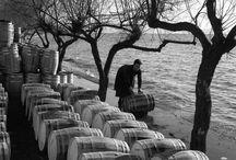 ΔΗΜΗΤΡΗΣ ΛΕΤΣΙΟΣ / Ο Δημήτρης Λέτσιος (Ανακασιά 1910 - Ανακασιά 2008) είναι μια από τις σημαντικότερες μορφές στη μεταπολεμική ελληνική φωτογραφία. Με έδρα τον Βόλο, ακτίνα δράσης το θεσσαλικό χώρο και την ευρύτερη ελληνική επικράτεια και χρονικό ορίζοντα που υπερβαίνει το μισό αιώνα, υπήρξε ακούραστος περιηγητής του ελληνικού τόπου, δημιουργώντας ένα πολύτιμο φωτογραφικό αρχείο σαράντα χιλιάδων περίπου