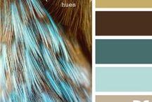 Color schemes