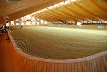 OMG Arenas / Good looking arenas