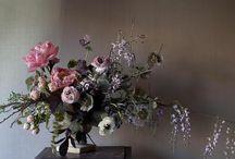 Flowers / by tamera