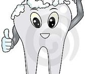 Tělo,zuby