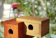 σπιτάκι για πουλια