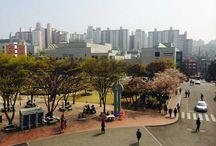 아름다운 Campus 풍경