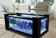 Fish Tank / Transform the Way Your Home Looks Using a Fish Tank ==================================================================== If you would like TO JOIN:  1) Follow my account .  2) Send me a message.  No Price Tags, No Spam, No Recipes.