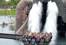 Amusement and water parks