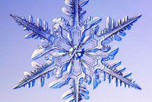 snowflake / by Lisa Sanner