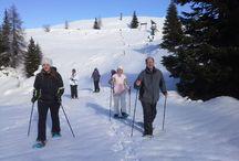 Im Naturpark Dobratsch unterwegs / Sommer wie Winter sind wir gerne mit den Gästen im Naturpark Dobratsch.