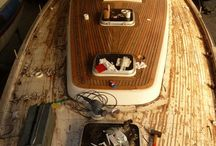 Marine life / boards and boats