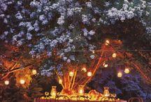 My dream wedding / by Jaime Giannakis