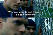 ¤ Prison Break ¤