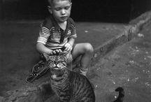 Photos l'homme et l'animal