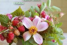 ورود وأزهار / حديقة الوان