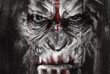 planeta dos macacos novo