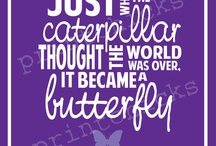 Everything Butterfly
