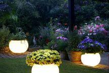 luce giardino