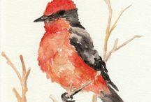 Red Bird Vermillion Flycatcher Original Watercolor by GrowCreative