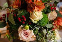 Flower Power, Herbst, Weihnachten