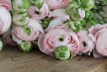Mariage fleur