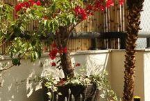 jardins e afins