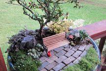 Miniature Gardens / Miniature and Fairy-Gardens