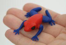 Reptiles and amphibians / Krybdyr og padder