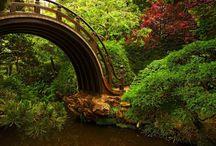 Secret Garden / by Maggan Vallin